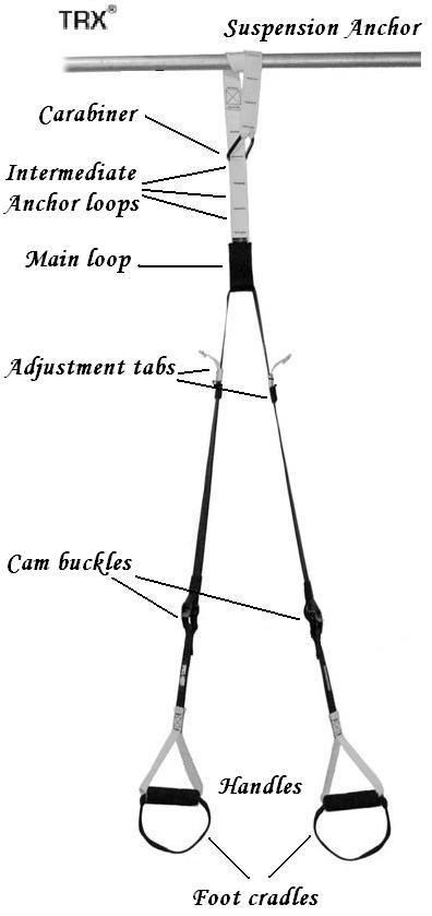 trx suspension training manual pdf